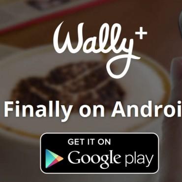 Aplicación Wally: ¿cómo ahorrar dinero de forma social?
